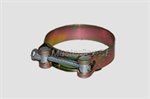 Hose Clamp with Bolt Clamp